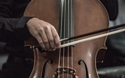 What Makes The Cello Unique from Other Instruments?